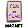 Cats are Cunts - Magnet