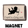 Cupid is a lying cunt - Magnet