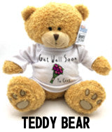 Get Well Soon Ya Cunt - Teddy Bear Navigaton