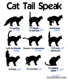 """Cat Tail Speak"" - Design"