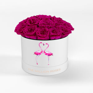 "classic round box - white ""flamingo"" - hot-pink GARDEN roses eternity garden roses - the million roses"