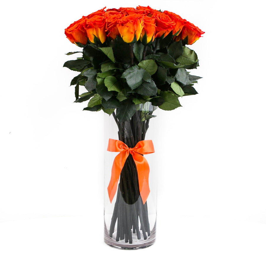 LONG STEM collection - orange ETERNITY roses  - the million roses