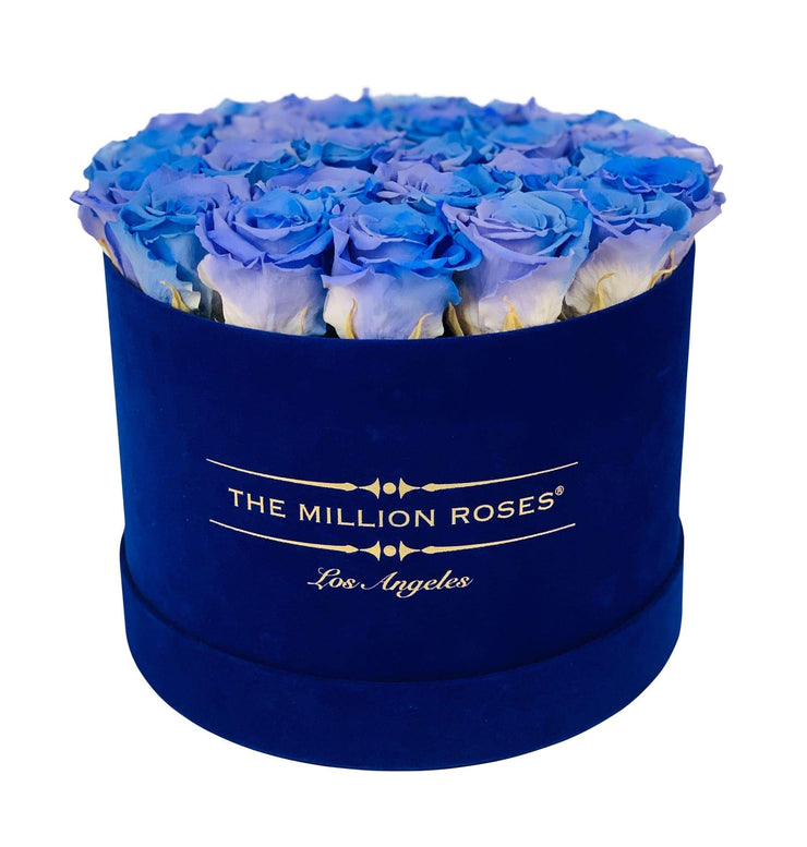 premium round box - royal-blue suede box - violet rainbow roses