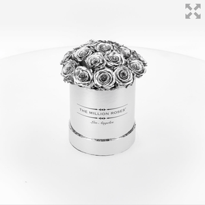 the million basic box - mirror-silver - silver ETERNITY roses silver eternity roses - the million roses