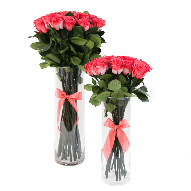 LONG STEM collection - coral roses  - the million roses