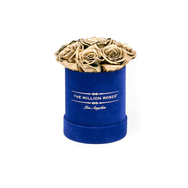 the million basic+ - glamour royal-blue suede box - gold eternity roses gold eternity roses - the million roses