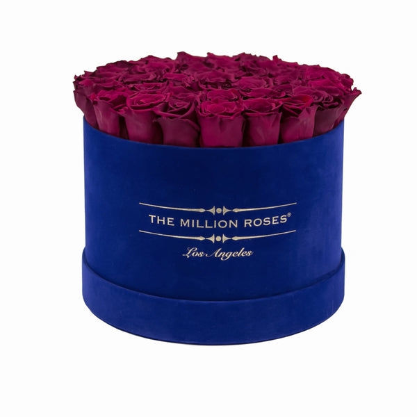 the million medium+ - royal-blue suede box - burgundy roses