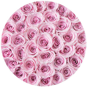 "premium round box - ""flamingo"" - light-pink roses"