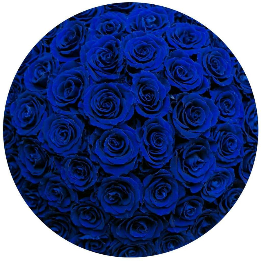 the million medium+ - royal-blue suede box - royal-blue roses with sparkle effect