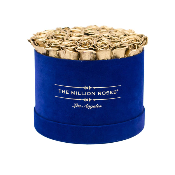 the million medium+ - glamour royal-blue suede box - gold eternity roses gold eternity roses - the million roses