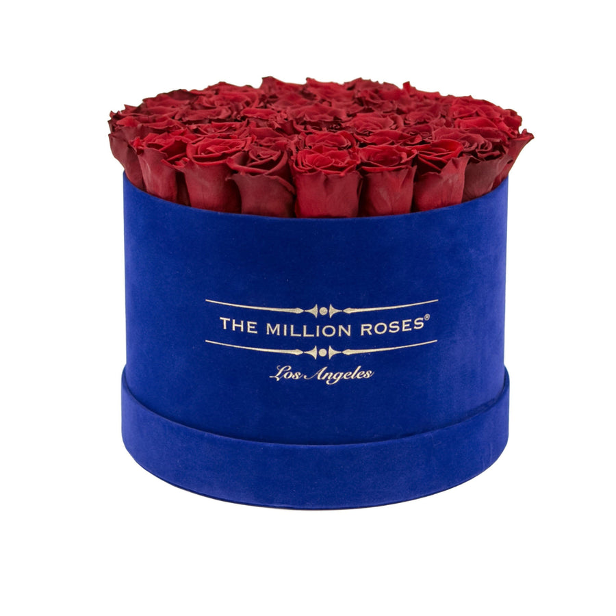 the million medium+ - glamour royal-blue suede box - dark-red eternity roses red eternity roses - the million roses
