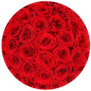 "the million roses medium round box - ""Love Collection"" limited edition ""heart"" red eternity roses - the million roses"