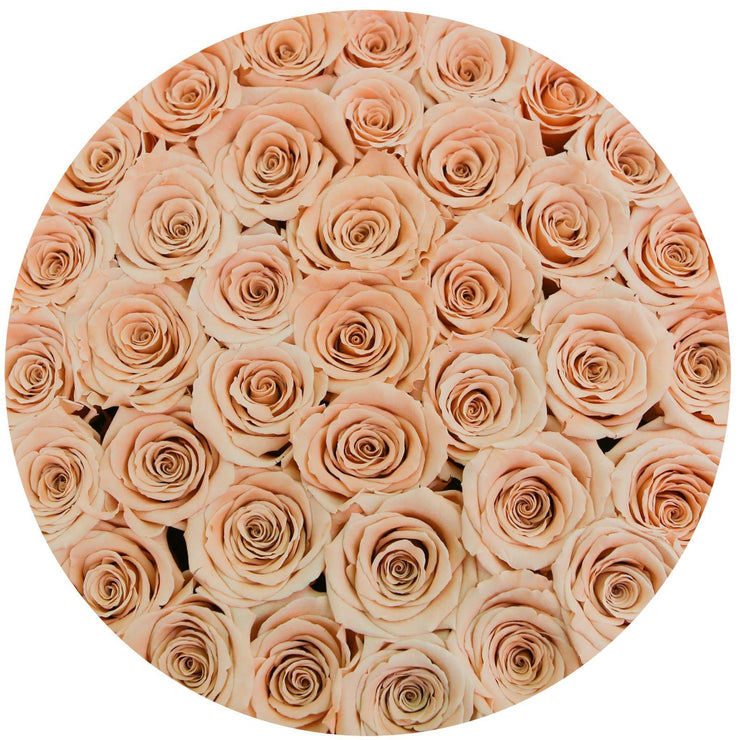 medium round box - white - peach roses peach eternity roses - the million roses