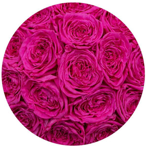 classic round box - hot-pink suede box - hot-pink garden-roses pink eternity roses - the million roses