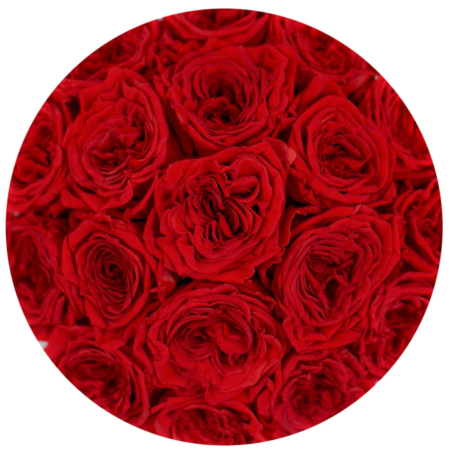 "the million roses small round box - ""Love Collection"" limited edition ""heart"" red eternity roses - the million roses"