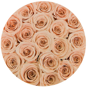 classic round box - gold - peach roses peach eternity roses - the million roses