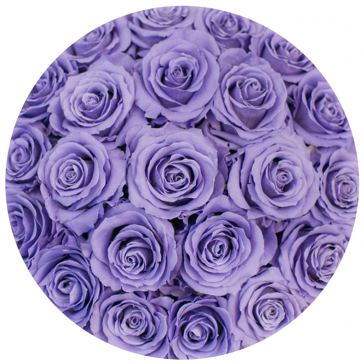 classic round box - light-pink suede box - violet roses ( dome ) violet eternity roses - the million roses