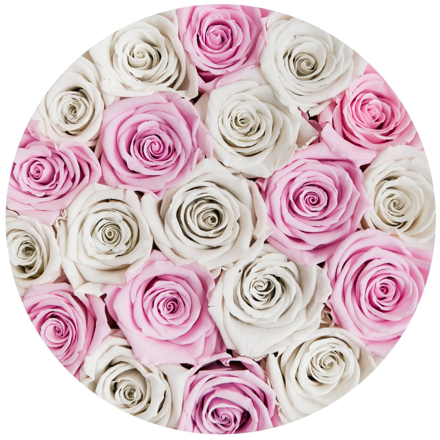 small round box - pink - off-white&light-pink ETERNITY roses