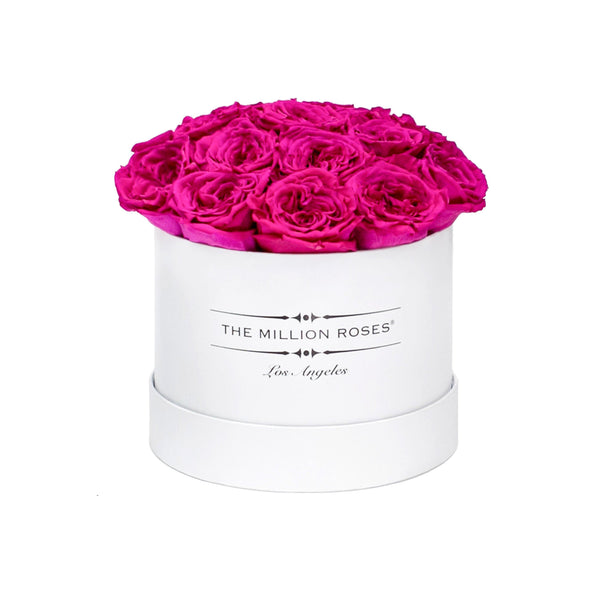 classic round box - white - hot-pink GARDEN roses eternity garden roses - the million roses