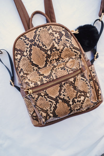los angeles new photos limpid in sight To Eternity Snakeskin Backpack Purse