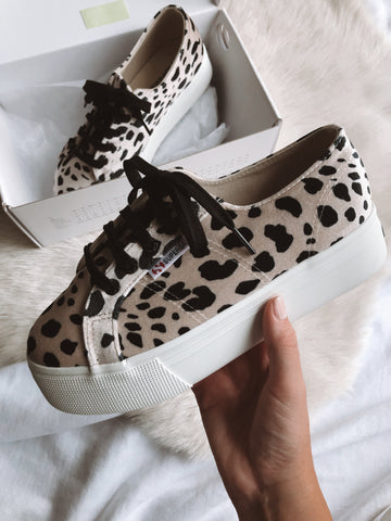 Superga 2790 Velvet Platform Sneakers in Dalmation