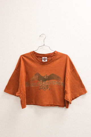 Late Night Harley Davidson Crop Tee