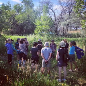 Foothills Edible & Medicinal Plant Walk / July 20th
