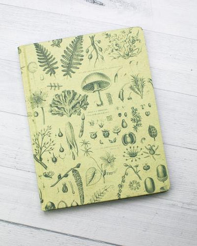 Flora & Fauna Notebooks