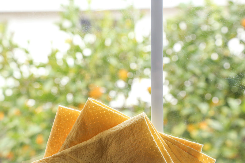 Reusable Window Wipes
