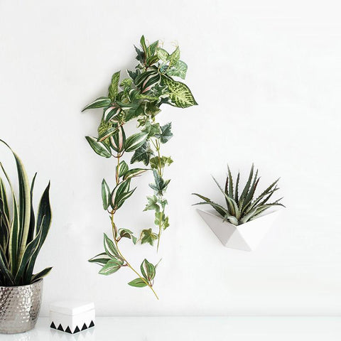 Wall Plant Vase - AARB Store