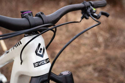 ALPHA 29 SPECIAL EDITION - Evolve Bikes