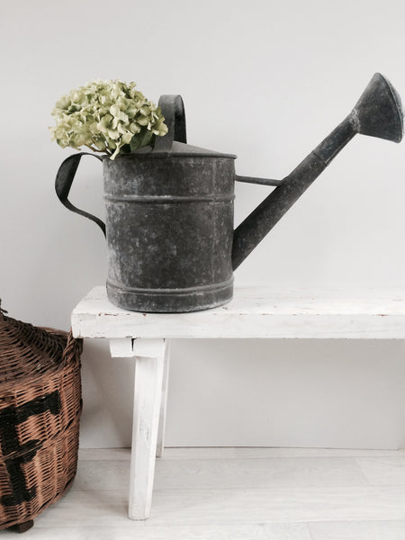 Old French Watering Can Metal
