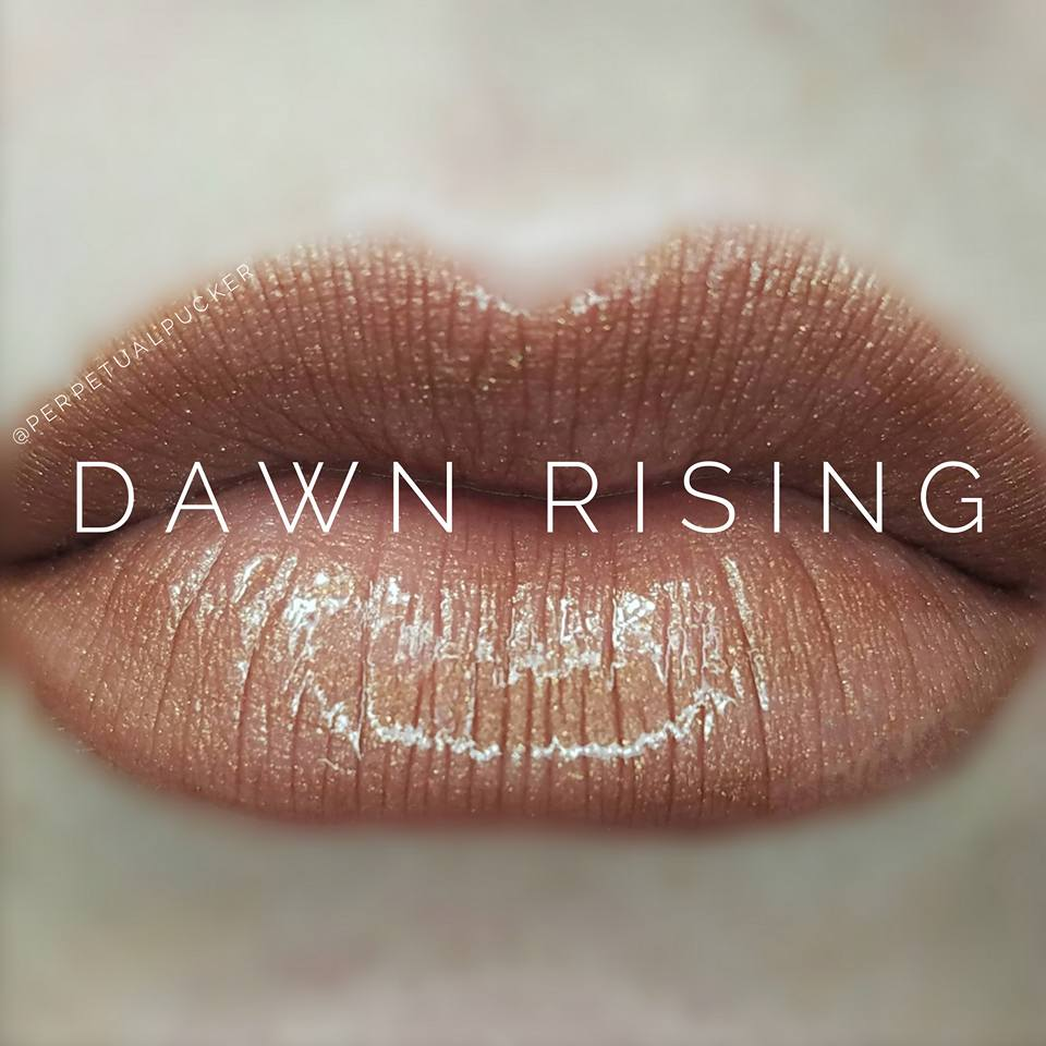 Dawn Rising Starter Collection (color, glossy gloss and oops remover) - HoneyLoveBoutique