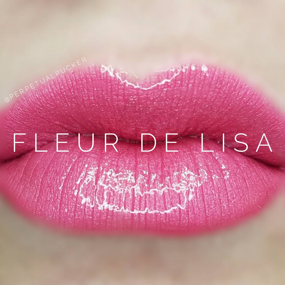 Fleur De Lisa Starter Collection (color, glossy gloss and oops remover) - HoneyLoveBoutique