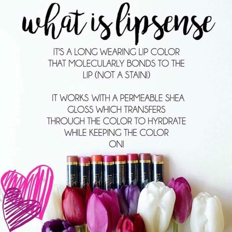 Roseberry Starter Collection (color, glossy gloss and oops remover)