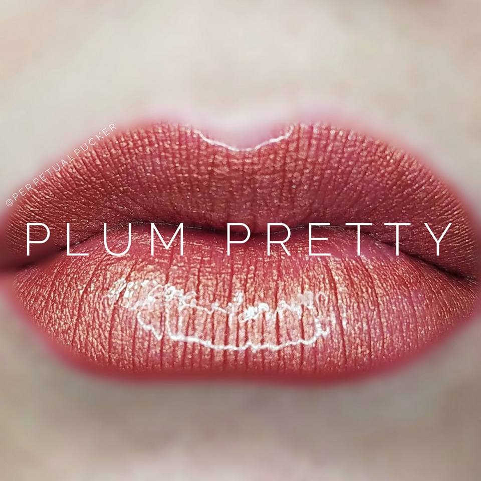 Plum Pretty Starter Collection (color, glossy gloss and oops remover) - HoneyLoveBoutique