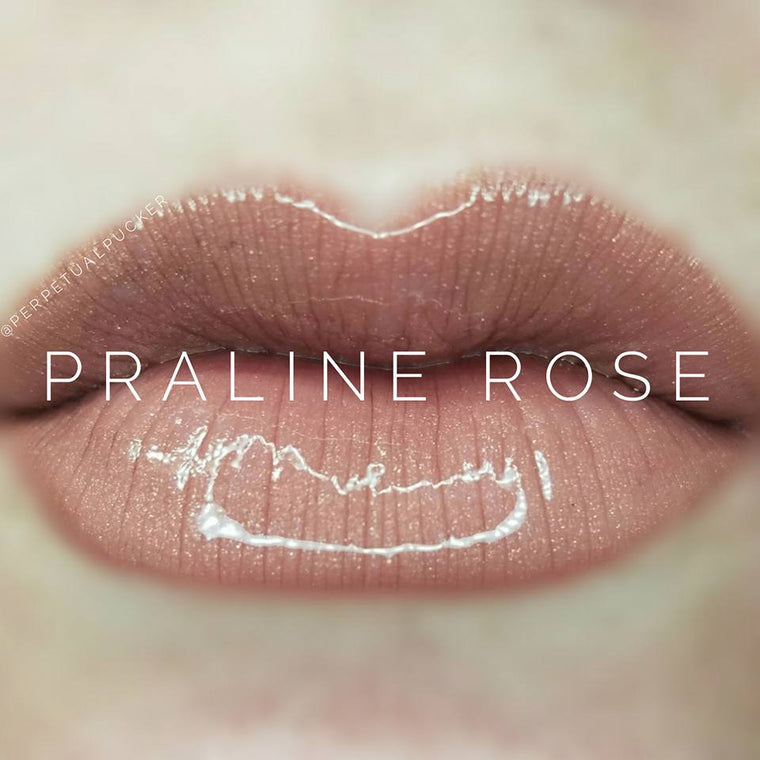 Praline Rose Starter Collection (color, glossy gloss and oops remover) - HoneyLoveBoutique