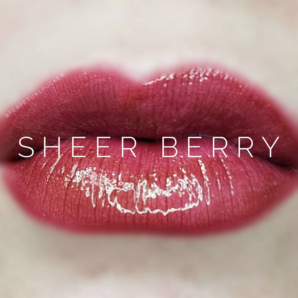 Sheer Berry Starter Collection (color, glossy gloss and oops remover) - HoneyLoveBoutique