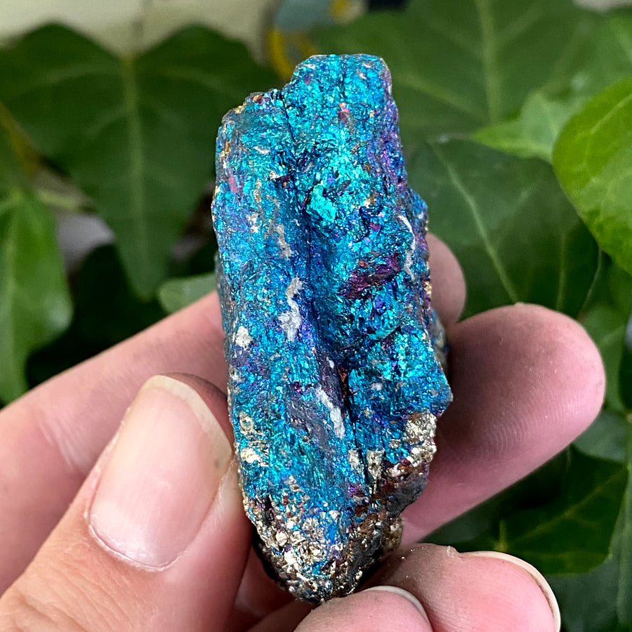 Chalcopyrite from Mexico