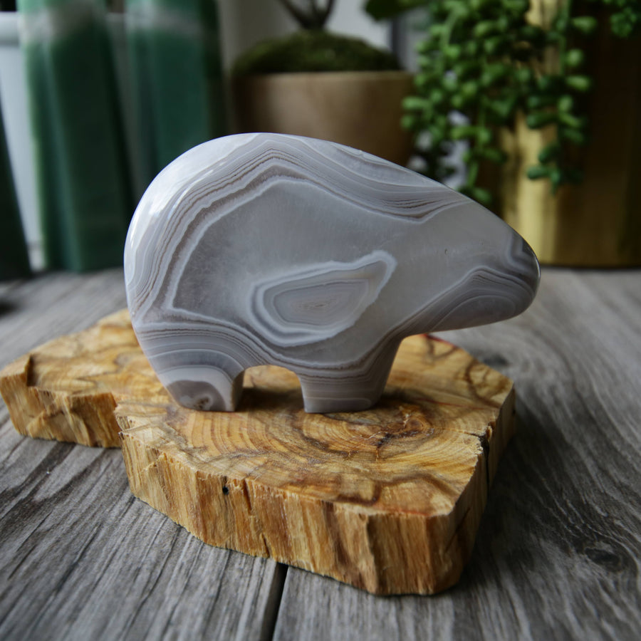 Agate Carved Bear from Madagascar