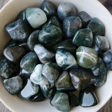 Moss Agate Tumbled Crystals from India