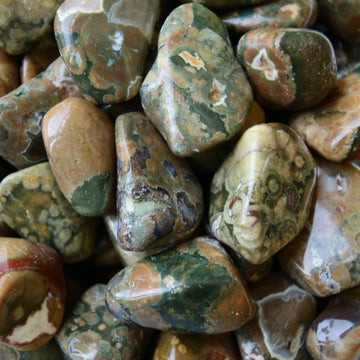 Rain Forest Jasper Tumbled Crystals from Australia