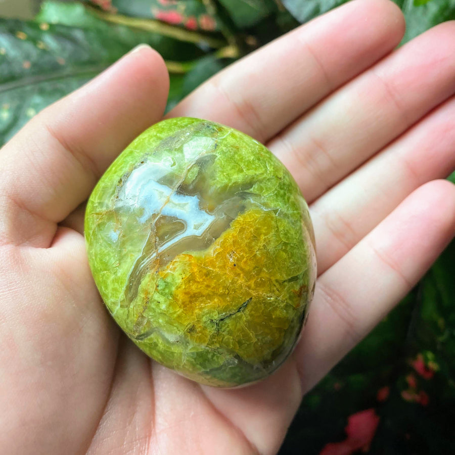 Green Opal Pocket Stone from Madagascar