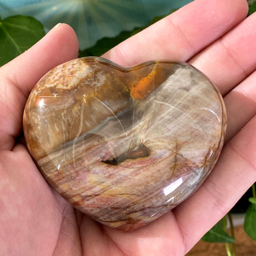 Petrified Wood Heart from Madagascar