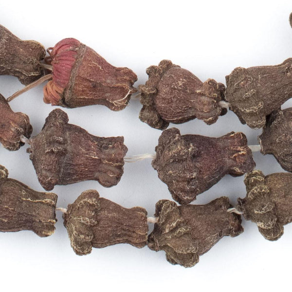Clove-Shaped Aromatic Moroccan Eucalyptus Beads - The Bead Chest