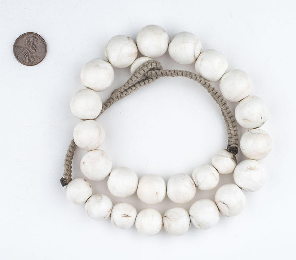 Graduated Round White Naga Shell Beads
