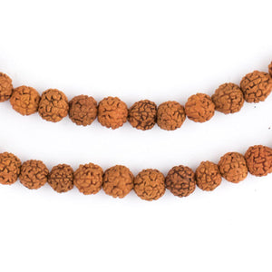 Baby Rudraksha Natural Seed Prayer Beads (6mm) - The Bead Chest