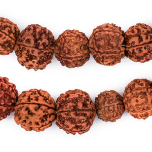 Rudraksha Mala Prayer Beads (18mm) - The Bead Chest