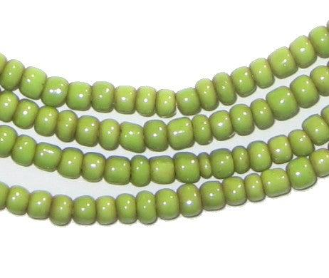Pistachio Green Small Glass Beads (2 Strands) - The Bead Chest