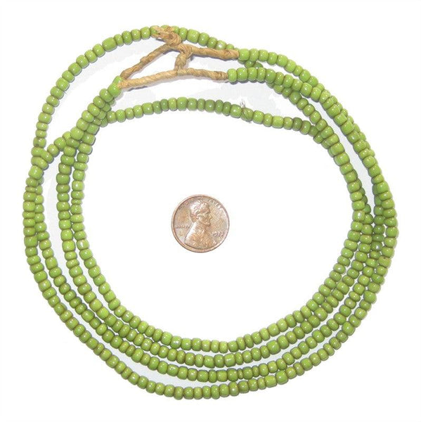 Pistachio Green Small Glass Beads (2 Strands)